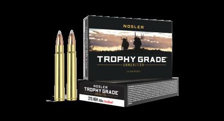 375 H&H Mag 300gr AccuBond Trophy Grade Ammunition