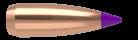 6mm 55gr Ballistic Tip Varmint (250ct)