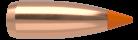 22 Caliber 40gr Ballistic Tip Varmint (250ct)