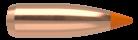 22 Caliber 50gr Ballistic Tip Varmint (1000ct)