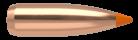 22 Caliber 55gr Ballistic Tip Varmint (1000ct)