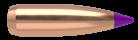 6mm 70gr Ballistic Tip Varmint (250ct)