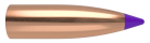 6mm 55gr Ballistic Tip Lead Free (100ct)